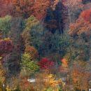 Jesen v Tivoliju