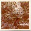 DIVJE JEZERO 1978 6