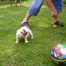 žoga je večja od mene