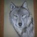 moje risbe