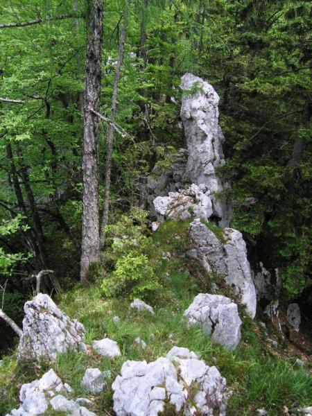 Mešenik-Črni vrh-K.dedec - foto povečava