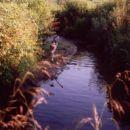ob potoku