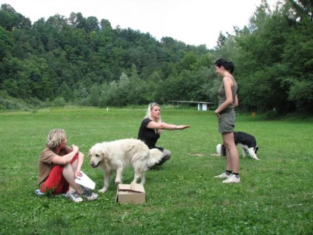 6.pesjanarsko srečanje - foto