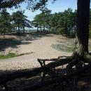 Peščene sipine kilometre od morja.