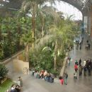 Train station with a pond and a rain forest