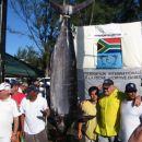 Druga največja ujeta riba na SP, Blue marlin 179,8kg. Ujela ga je ekipa Angola A