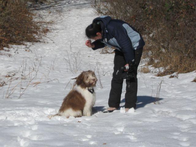 Feb.2012 - foto