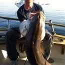 Ribičija 1