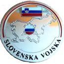 KOVANEC SLOVENSKA VOJSKA (SREBRN)