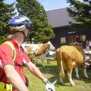 S kolesom na Mali planini