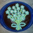 čokoladna torta s spominčicami