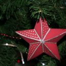 Zvezdica 3