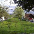 Pomlad 2009