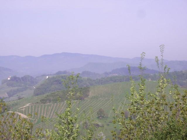 Teren meljski hrib 25.4.06 - foto
