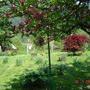vrt 2