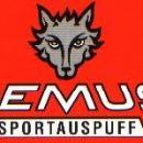 Remus-Sport Auspuff