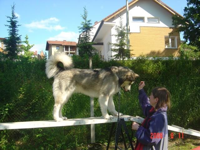 Aska & Jaka - 11.6.2006 - foto