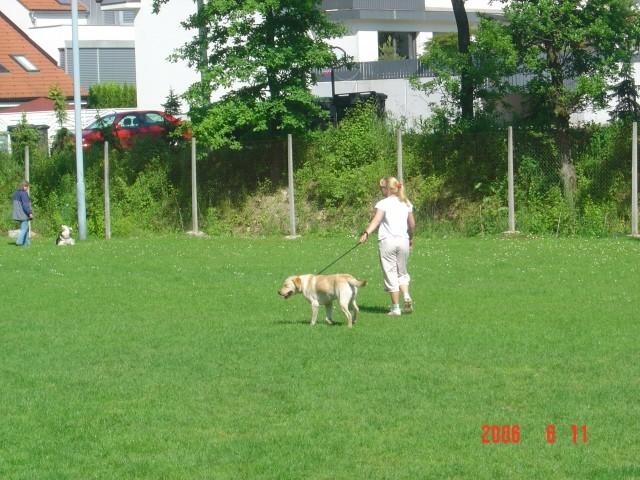 Aska & Jaka - 11.6.2006 - foto povečava