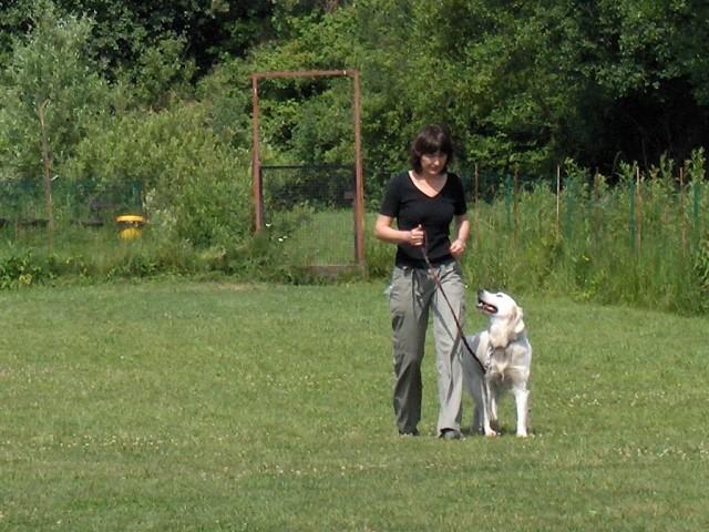 KD Barje - izpiti A in B-BH - 17.6.2006 - foto