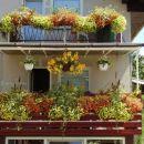 Balkon 2006