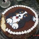pojedena torta