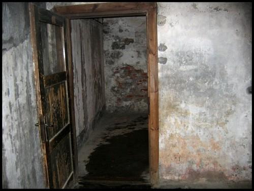 Auschwitz, 02.01.2006 - foto