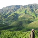 This is one of the tea plantations located along the way to Tanah