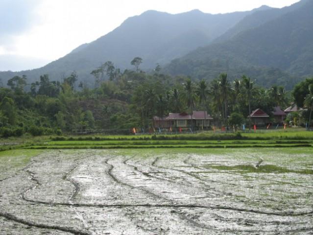 Beautiful nature on Palawan island