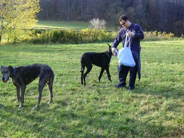 Nero in Goochie 02.11.2008 - foto