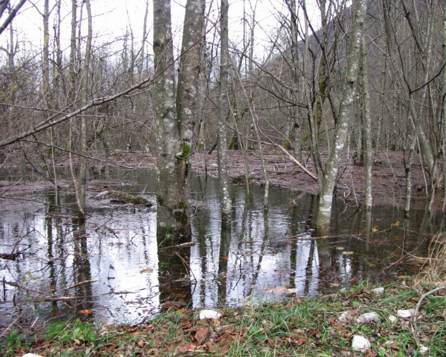 Bohinj_velika voda - foto povečava