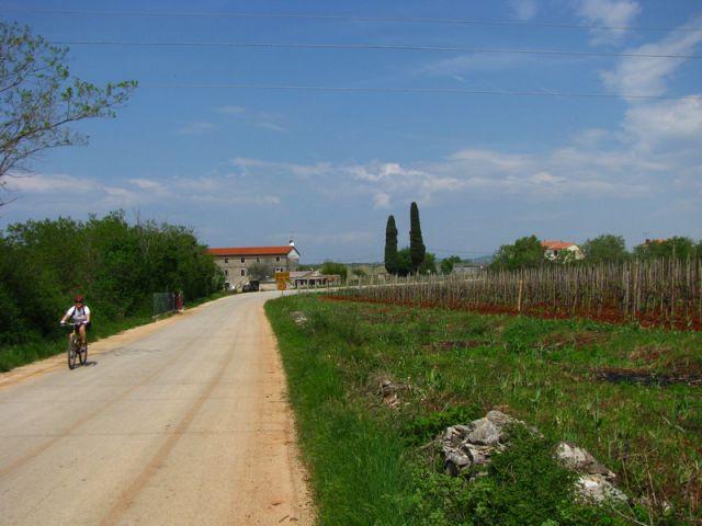 Goli vrh - Istra - april 2010 - foto