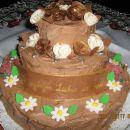 zelo čokoladna torta