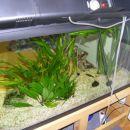 akvarij 4 cel