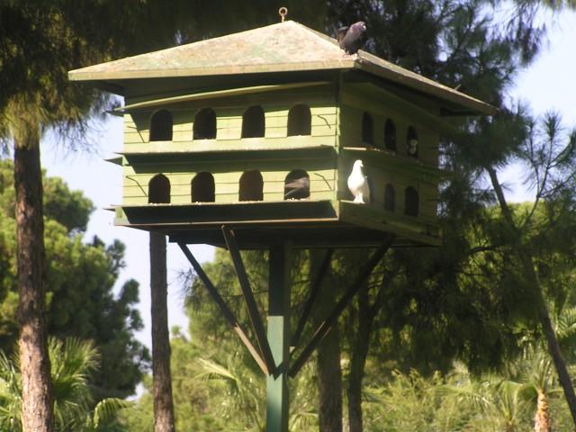 Zanimive ptičnice v lepo urejenem parku