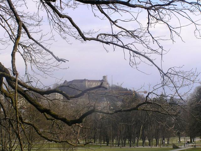 Ljubljanski grad v daljavi