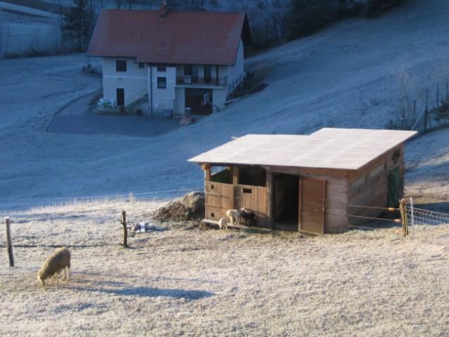 Jutranje prebujanje; december 2004