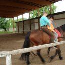 V tem zavodu imajo tudi konjušnico kjer se  tudi na konjih poizkušajo rehabilitirati .Nam