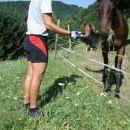 Tukaj krmim konja.
