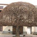 Drevo ali goba v Kobjeglavi?