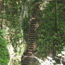 Stopnice do vhoda