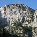 Rjavički vrg