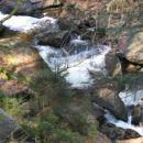 Divja narava v soteski pohorskega pragozda.