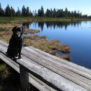 Moj važič s sinjino neba ,ki jo odseva mirna  gladina  jezera