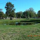 BAZOVICA 2012 a