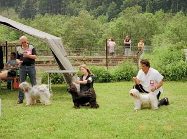 Hrušica 2006 - foto
