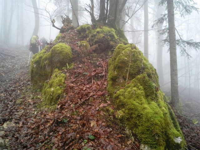 Strahomer-Krim in Vikrče-Šmarna gora-23.11.14 - foto