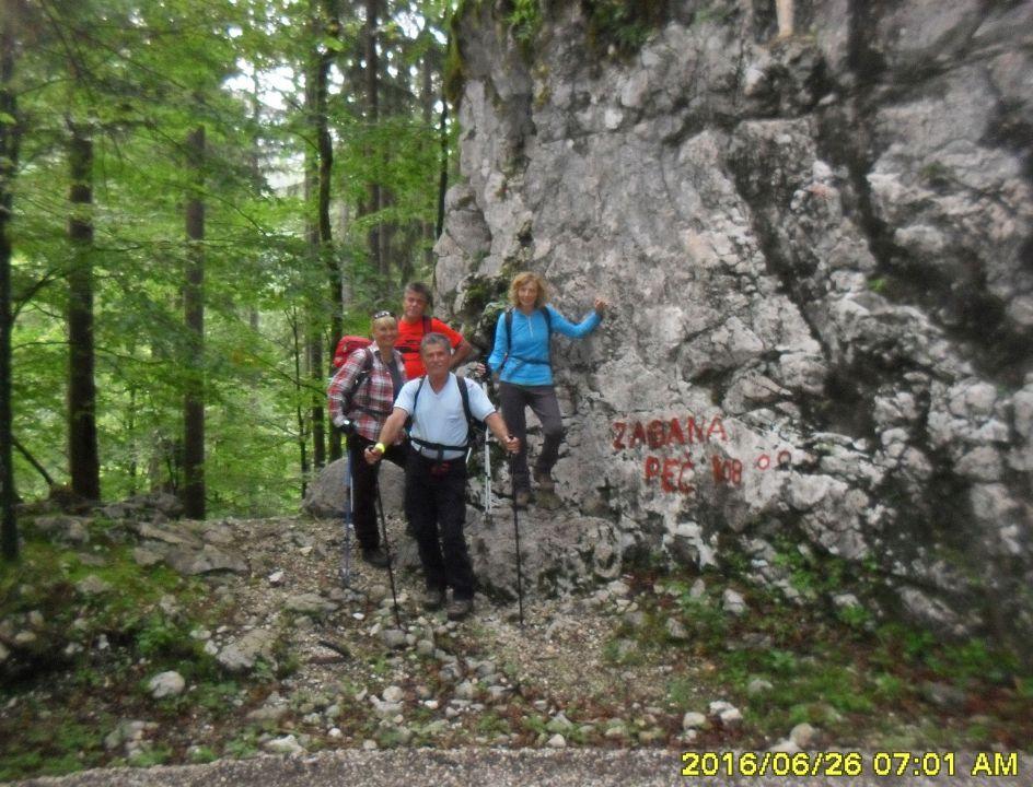 Žagana peč-lovska pot-Kalška gora-26.6.2016 - foto povečava