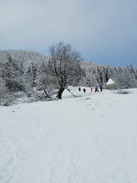 Pohod Sleme-Uršlja gora(1699m)-27.12.2020 - foto