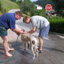 1.dan doma smo se morali temeljito umiti(seveda s toplo vodo)