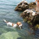 morje poletje 2006